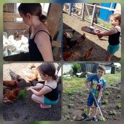 «Помощь родителям дома, во дворе, в огороде»